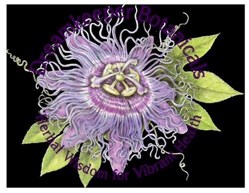 Dreamkeeper Botanicals